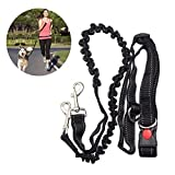 NUOLUX Hands Free Running Dog Lead, Adjustable Waist Belt Perfect for Jogging Hiking