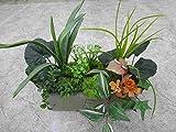 künstliches Pflanzen Set, F
