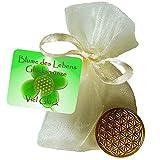 EnerChrom Blume des Lebens-Glücksmünze als Glücksbringer