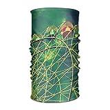 Wfispiy Magic Headwear Ferris Wheel 4-wallpaper-1920x1200 Sciarpe all'aperto Fasce per Capelli Bandana Maschera Collo Ghetta Testa Avvolgere Maschera Fascia