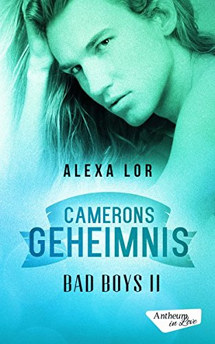 Camerons Geheimnis (Bad Boys)