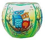 Himmlische Düfte Geschenkartikel CC209 Tischdekoration, Owls by Day Windlicht Glas 11 x 11 x 9 cm, bunt
