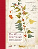 ISBN 325808078X