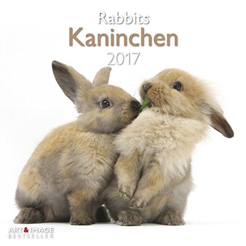 Kaninchen - Rabbits 2017 Broschürenkalender
