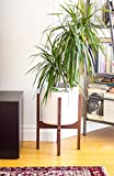 Best Mid Century - AD Planet Entryway Strong Wooden Plant Stand, Mid Review