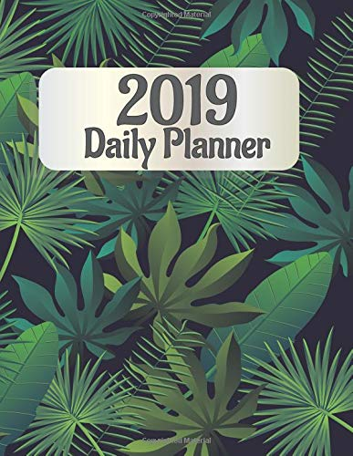 2019 Daily Planner: Monthly  and Daily Schedule Organizer with 12 Months Calendar (Diary Note/1 year/8.5 x 11, Band 3) 3 X Optic