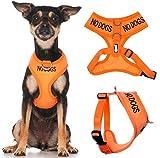 KEINE HUNDE (nicht gut mit anderen Hunden) Orange Farbe Coded Non-Pull-Front und Rückseite D Ring Gepolsterte und wasserdichte Weste Hundegeschirr verhindert Unfälle durch andere Ihren Hund in Vorwarnleuchte ( extra kleine Hals bis zu 26cm Brust 33-48cm)