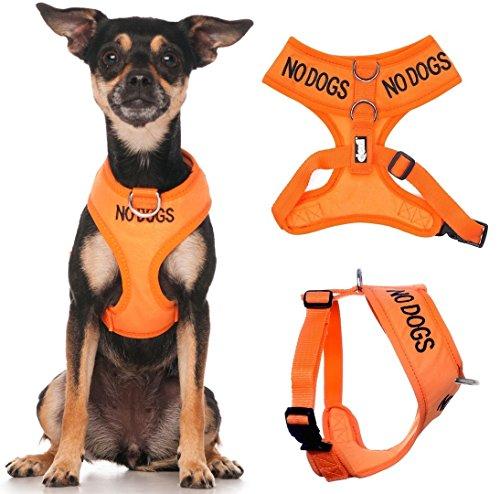 KEINE HUNDE (nicht gut mit anderen Hunden) Orange Farbe Coded Non-Pull-Front und Rückseite D Ring...