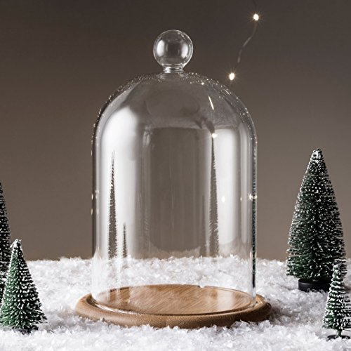Deko Glasglocke mit Holzboden 23cm Lights4fun