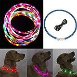 nabati Hunde Leuchthalsband LED Hundehalsband Leuchtband 70cm, Aufladen per USB