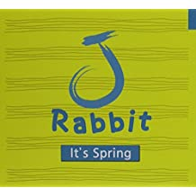 It's Spring by J Rabbit (2011-09-06)