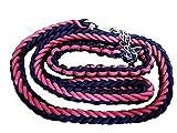 stabile geflochtene Hundeleine + Halsband (XL, schwarz/pink)