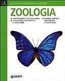 Zoologia. Ediz. illustrata