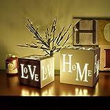 Sentik® Shabby Chic 3 LED Warm White Light Up HOME or LOVE Light Box Cube Christmas Xmas Festive Decoration (Love (15x15cm))