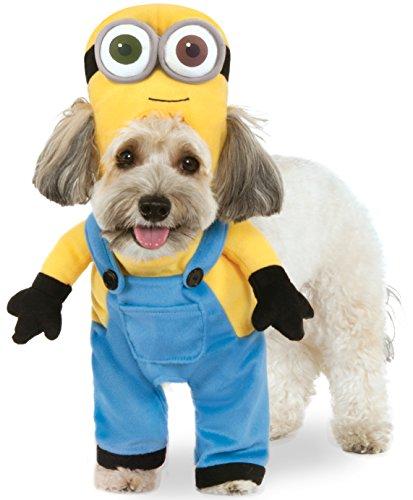 Minion Kostüm Pet - Rubies Costume Company Minion Bob Arms Haustieranzug, Large, Mehrfarbig