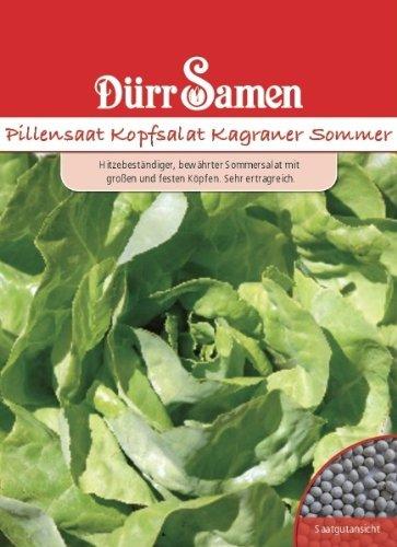Dürr Samen 0571 Kopfsalat Kagraner Sommer Pillensaat (Kopfsalatsamen)