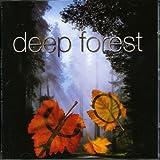 Songtexte von Deep Forest - Boheme