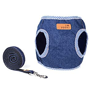 SANFENG-Pet-Dog-Cat-Harness-and-Leash-SetPet-Denim-Vest-Collars-Leads-Perfect-for-Medium-and-Small-Pets-Kitten-Puppy-Walking-Training-Running-Hiking