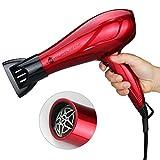 JINRI 1800W Ménage Léger Sèche-Cheveux DC Moteur Négatif Ion Puissant Séchoir à Séchoir 2 vitesse 3 Chaleur Cool Bouton avec Buse Concentrateur, Taille Normale