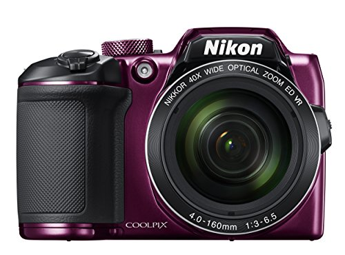 Nikon COOLPIX  B500  Appareil photo Viol