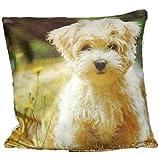 Kissenhüllen 40x40 cm Dekokissen Kissenbezug Fotokissen Kissen Hüllen Bezug Bezüge Hunde Dog (Westie #3683)