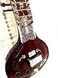 indien fait à la main ~ Electric sitar Shri Ravi Shankar Style Designer Tun Bois Corde gratuit et Mizrab + Sac