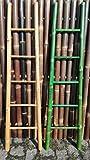 Bambusleiter Leiter Handtuchhalter Bambus 180 cm x 48 / 34 cm natur