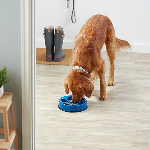 AmazonBasics-Dog-Slow-Feeder-Bowl-for-Anti-Bloating