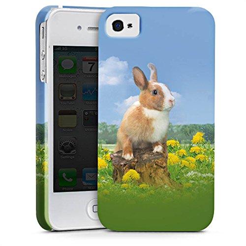 Apple iPhone X Silikon Hülle Case Schutzhülle Häschen Hase Kaninchen Premium Case glänzend