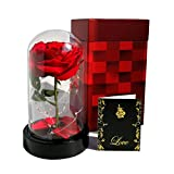 Homeseasons Enchanted Rose, Beauty and the Beast Rose rouge, rose en soie lumineux en dôme en verre