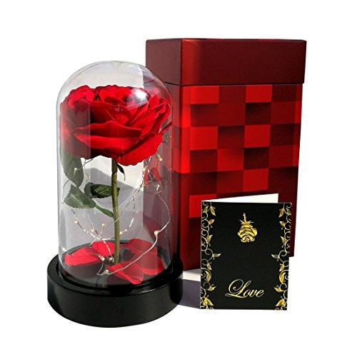 Homeseasons Enchanted Rose, Beauty und The Beast rot Rose, Rose, beleuchteter Seide in - Geschenkboxen Weihnachten Beleuchtete
