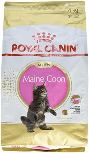 Royal Canin : Croquettes Chaton Maine Coon : 4-12 Mois 4kg