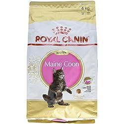 Royal Canin Kitten Maine Coon 4.0 kg