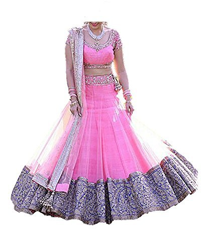 Dhruv Fab Women's Net and Embroidery Lace Lehenga Choli(EVREE-PINK_Pink Color_Free Size)