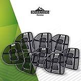 Donnerberg Lordosenstütze I Rückenstütze fördert gesunde Sitzhaltung I Haltungskorrektur der Lendenwirbelsäule I für Stuhl, Bürostuhl, Autositz I Setwahl 1-er,2-er,4-er,6-er, 8-er Set