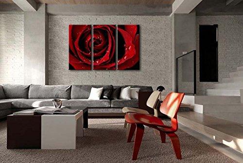 Impresión de Lienzo de Pared Arte Imagen Frontal Rojo Rosa Brillante fresco color rosa gotas de agua en los pétalos 3piezas pinturas Giclée de moderna estirada y enmarcado imágenes de obras de arte la flor impresiones de fotos sobre Lienzo