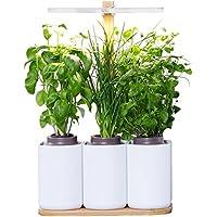 Smart Lilo, le potager d'intérieur autonome Prêt à Pousser - Cultivez toute l'année simplement - inclus basilic, menthe et ciboulette