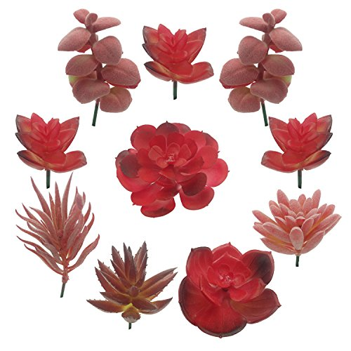 Sukkulenten Künstlich, PietyDeko 10 Stück Sukkulenten Plastik Kaktus Deko Set für Party, Hochzeiten, Zuhause und Büro Deko Rot