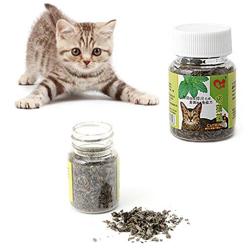 Kofun Katze Snack Katzenminze Frische Bio Getrocknete Katzenminze Nepeta Cataria Blatt Und Blume 1 Flasche 12g