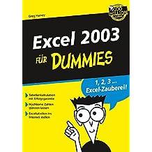 Excel 2003 für Dummies
