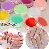 Veena 12 Colors Nail Art Tips Uv Gel Acrylic Powder Dust Builder Design