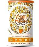 Vegan Protein (Pumpkin Spice) - Protein aus Reis, Hanfsamen, Lupinen, Erbsen, Chia-Samen, Leinsamen, Amaranth, Sonnenblumen- und Kürbiskernen - 600 Gramm Pulver mit natürlichem Pumpkin Spice Geschmack