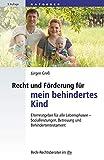 Recht und Förderung für mein behindertes Kind: Elternratgeber für alle Lebensphasen - Sozialleistungen, Betreuung und Behindertentestament (dtv Beck Rechtsberater)