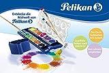 Pelikan 720250 Deckfarbkasten K12, 12 Farben + 1 Tube Deckweiß, Schul-Standard -