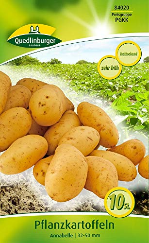 Quedlinburger 84020 Kartoffel Annabelle 10 Stück (Pflanzkartoffeln)