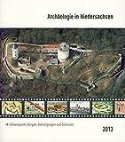 Archäologie in Niedersachsen, Band 16/2013: Schwerpunkt: Burgen, Befestigungen und Schanzen -