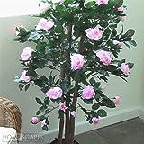 Homescapes Deko Kunstpflanze Rosenbaum Pink Höhe ca. 122 cm Kunstbaum mit Rosenblüten im Topf, Künstliche Pflanzen