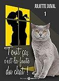 Tout ça, c'est la faute du chat ! - 1 (French Edition)