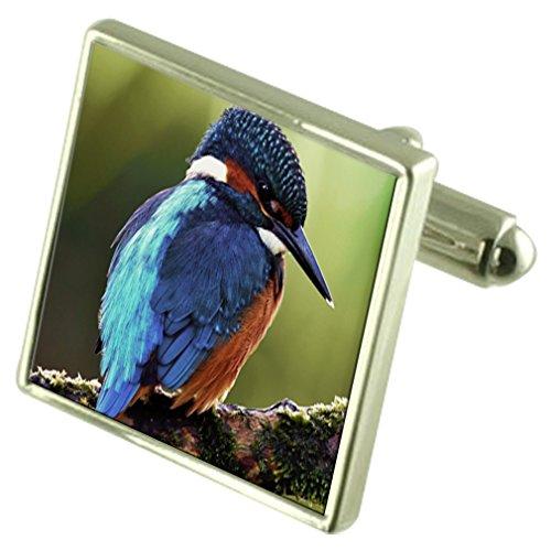 kingfisher-inciso-ricordo-nella-casella-di-messaggio