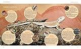 Bartagamen: Wohlfühl-Garantie für kleine Echsen (GU Tierratgeber) - 5